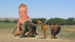 PH baby animal display